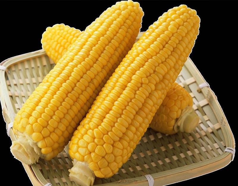 批发速冻甜玉米块