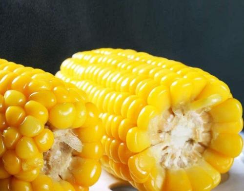 速冻甜玉米块生产线